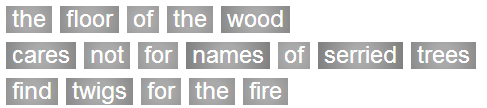 Haiku 1 - the floor of the wood / cares not for names of serried trees /  find twigs for the fire
