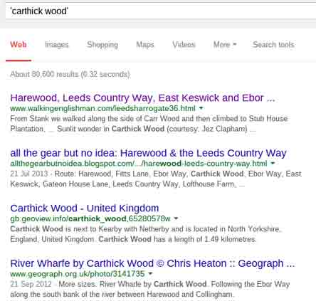 Google results for carthick wood