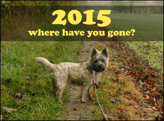 2015, where have you gone?