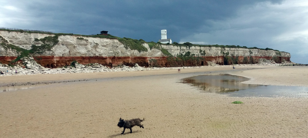 Hunstanton cliffs and Smithy running