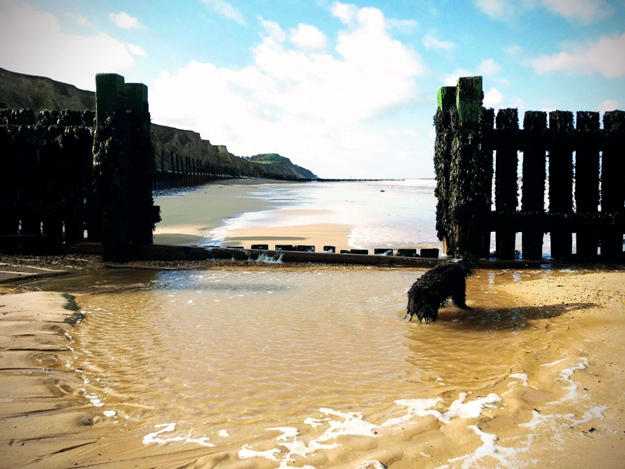 sand-gate