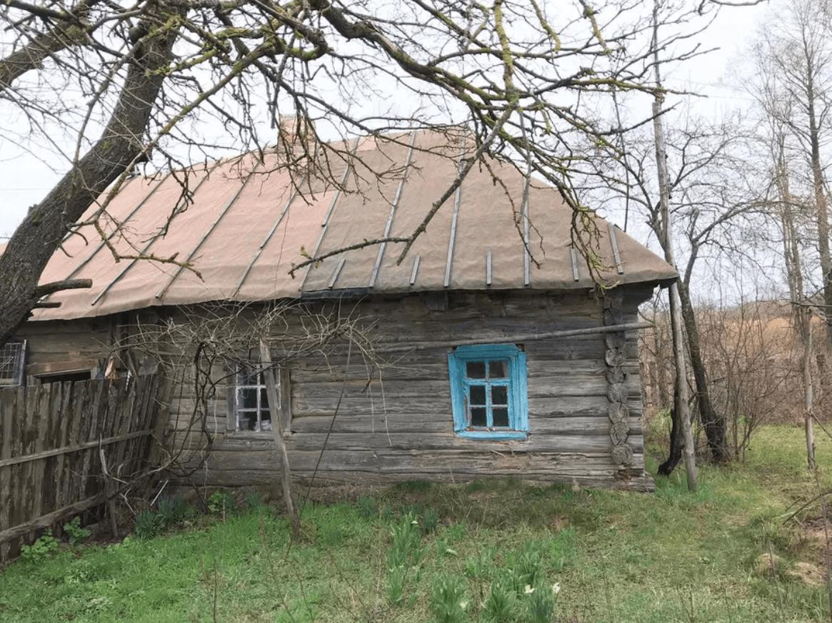 Nedanchychi cottage