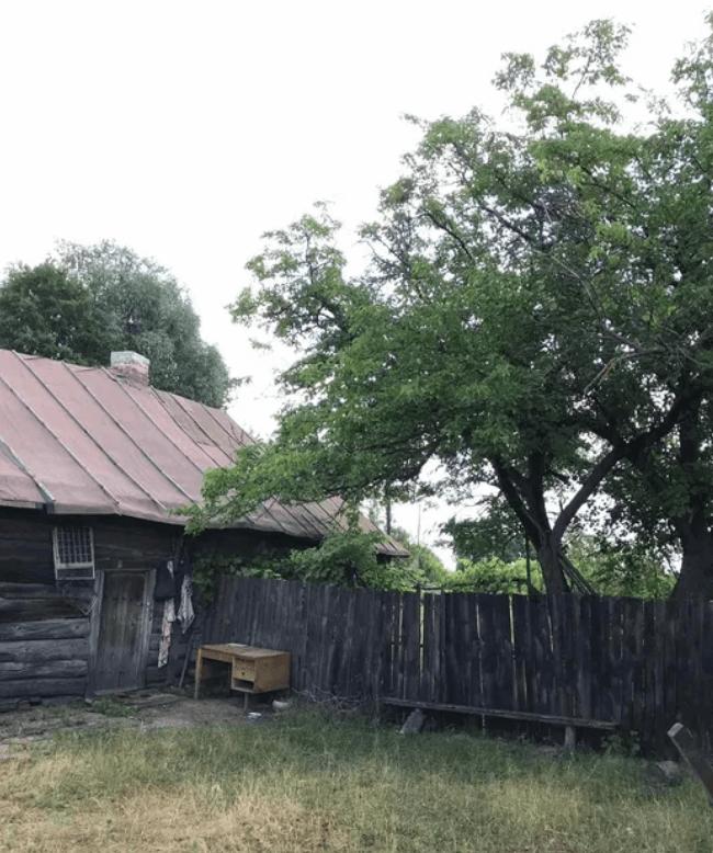 Nedanchychi garden